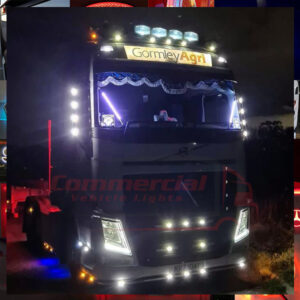 LED LIT SPANISH SWORDS / TRUCK WINDOWS POLES